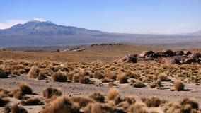 Mountain in Altiplano. Bolivia, south America. Stock Photos
