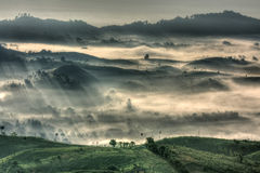 Free Mountain And Fog Royalty Free Stock Photo - 16697105