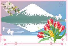Mountain And Tulip Stock Image