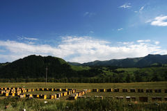Mountain and apiary. The scene of sinkiang .looks very beautiful Stock Photography