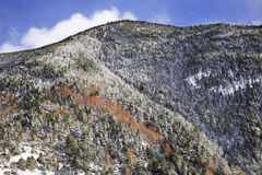 Mountain in Arans. Principality of Andorra Stock Images