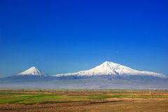 Mountain Ararat. Ararat valley , Armenia Stock Photography
