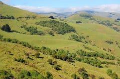 The mountain area. The green mountain ranch area in New Zealand Royalty Free Stock Photos