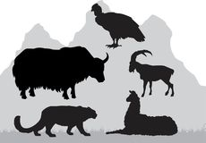 Mountain area animals. Set mountain area animals vector silhouettes vector illustration