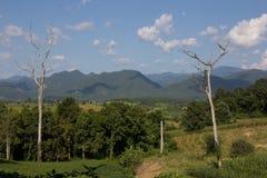 Mountain area Royalty Free Stock Photo