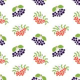 Mountain ash and black chokeberry. Seamless pattern. Vector berries. Organic healthy food. Fashion print. Design elements. For textile or clothes. Hand drawn stock illustration