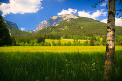 Mountain in Austria Stock Photography