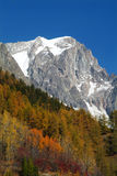 Mountain in Autumn. Mountain of the Mont Blanc Group on a blu sky and red wood Royalty Free Stock Photography