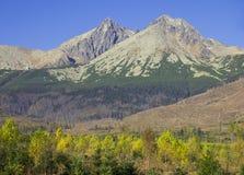 Mountain in autumn Stock Photos