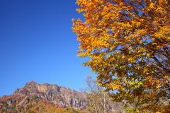 Mountain in autumn Stock Photo