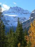 Mountain in Autumn. Mountain peak in Autumn, Jasper National Park, Alberta, Canada Royalty Free Stock Photography