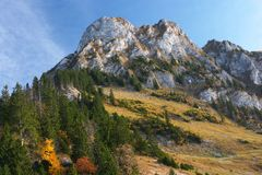 Mountain and autumn forest in Jura. White limestone mountain and autumn forest in Jura, Switzerland Royalty Free Stock Photo