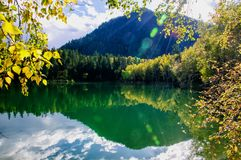 Mountain autumn green siberia lake with reflection and the branch of a birch. Russia Royalty Free Stock Photography