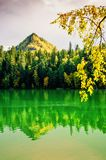 Mountain autumn green siberia lake with reflection and the branch of a birch. Russia Stock Photo