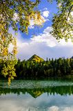 Mountain autumn green siberia lake with reflection and the branch of a birch. Russia Stock Photos