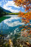 Mountain autumn green siberia lake with reflection and red rowan. Russia Royalty Free Stock Photography