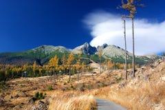 Mountain autumn landscape Stock Photos