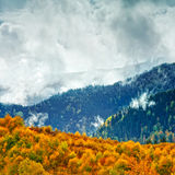 The mountain autumn landscape Royalty Free Stock Image