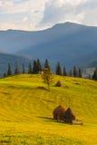 The mountain autumn landscape Royalty Free Stock Photo