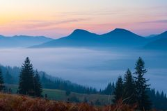 The mountain autumn landscape Royalty Free Stock Photography