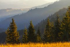 The mountain autumn landscape with colorful forest Stock Photos