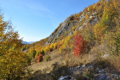 Mountain autumn landscape Royalty Free Stock Images