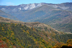 Mountain autumn landscape. With colorful forest Stock Image