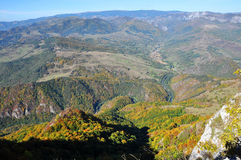 Mountain autumn landscape. With colorful forest Stock Photography