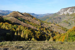 Mountain autumn landscape. With colorful forest Stock Photos