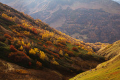 The mountain autumn landscape with colorful forest. The beautiful mountain autumn landscape with colorful forest Royalty Free Stock Photography