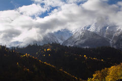 The mountain autumn landscape with colorful forest Stock Photography