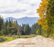 The mountain autumn landscape with colorful forest. Colorful aut. Umn landscape in the Carpathian mountains. Deciduous forest in hills Royalty Free Stock Photo