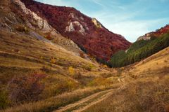 Mountain autumn landscape with colorful forest Royalty Free Stock Photos