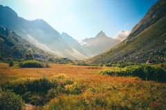 The mountain autumn landscape with colorful forest and high peak Stock Images