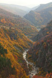 Mountain autumn landscape. With colorful forest and river Royalty Free Stock Photo
