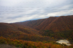 Mountain autumn landscape. With colorful forest and roadway Stock Photography