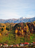 The mountain autumn landscape with colorful forest. Mountain autumn landscape with colorful forest, rural village Stock Images