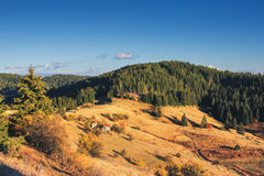 Mountain autumn landscape with colorful forest and traditional h royalty free stock image