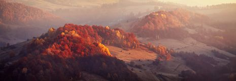 Mountain autumn panorama with colorful forest. Relict beech and. Mountain autumn panoramic landscape with colorful forest. Relict beech and hornbeam woodland Stock Images