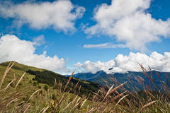 Mountain awn. Beautiful awn with mountain view Stock Images
