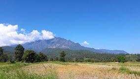 mountain background. Chiang Mai. royalty free stock images