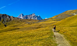 Mountain Backpacking. A Backpacker on the mountains of the Swiss Alps Royalty Free Stock Photography
