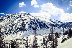 Mountain beautiful landscape winter sunny day Stock Photography