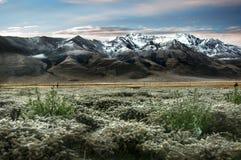 Mountain. The beautiful morning view in Tibet Stock Image
