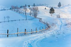 Mountain beauty concept. Cold winter day in hilly area. Frosty morning. New year concept. Xmas time royalty free stock images