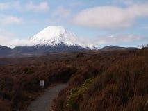 Mountain Behind Heath Royalty Free Stock Photography