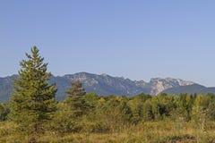 Mountain Benediktenwand Stock Images