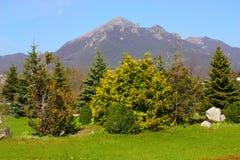 Mountain Beshtau. Stock Image