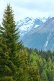 Mountain Bettmeralp summer view(Switzerland) Royalty Free Stock Photo