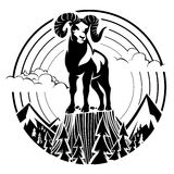 Mountain bighorn sheep. stock illustration